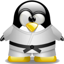 Avatar for thelinuxkid from gravatar.com