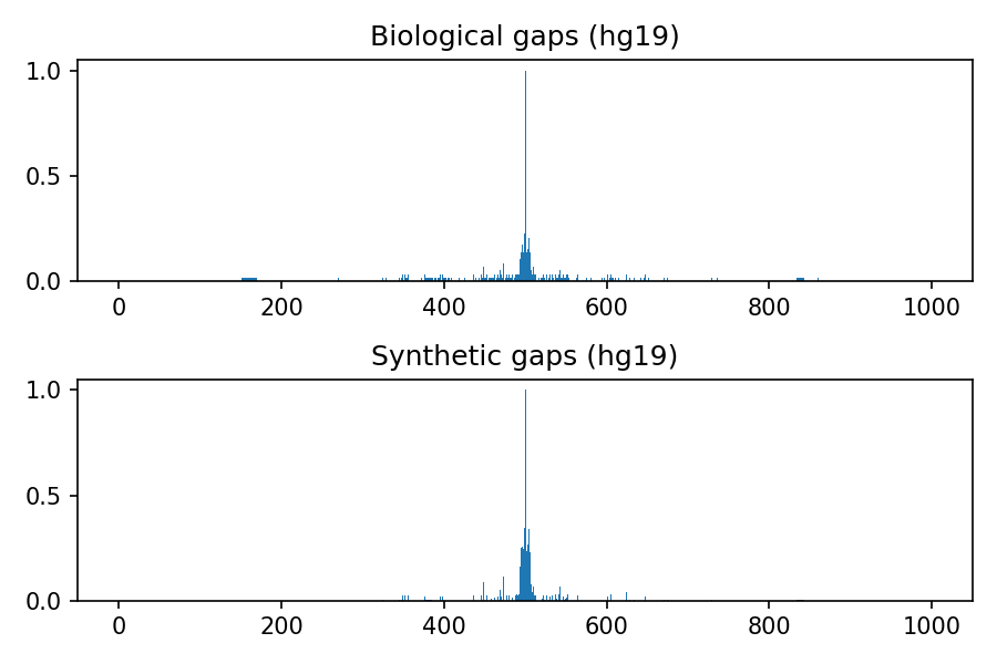 https://github.com/LucaCappelletti94/keras_synthetic_genome_sequence/blob/master/distributions/hg19.png?raw=true