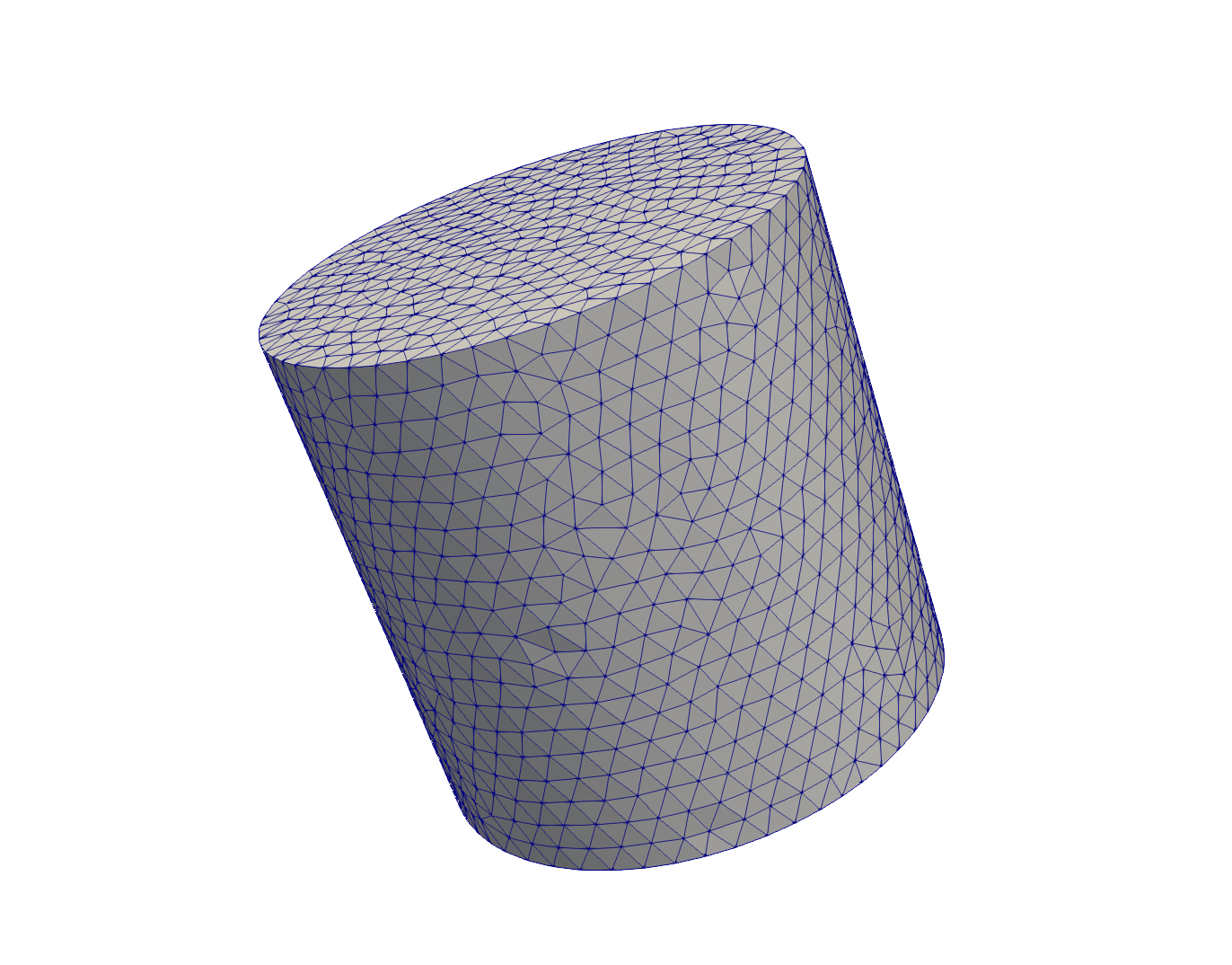 Above shows the mesh in ParaView that results from running the code below.