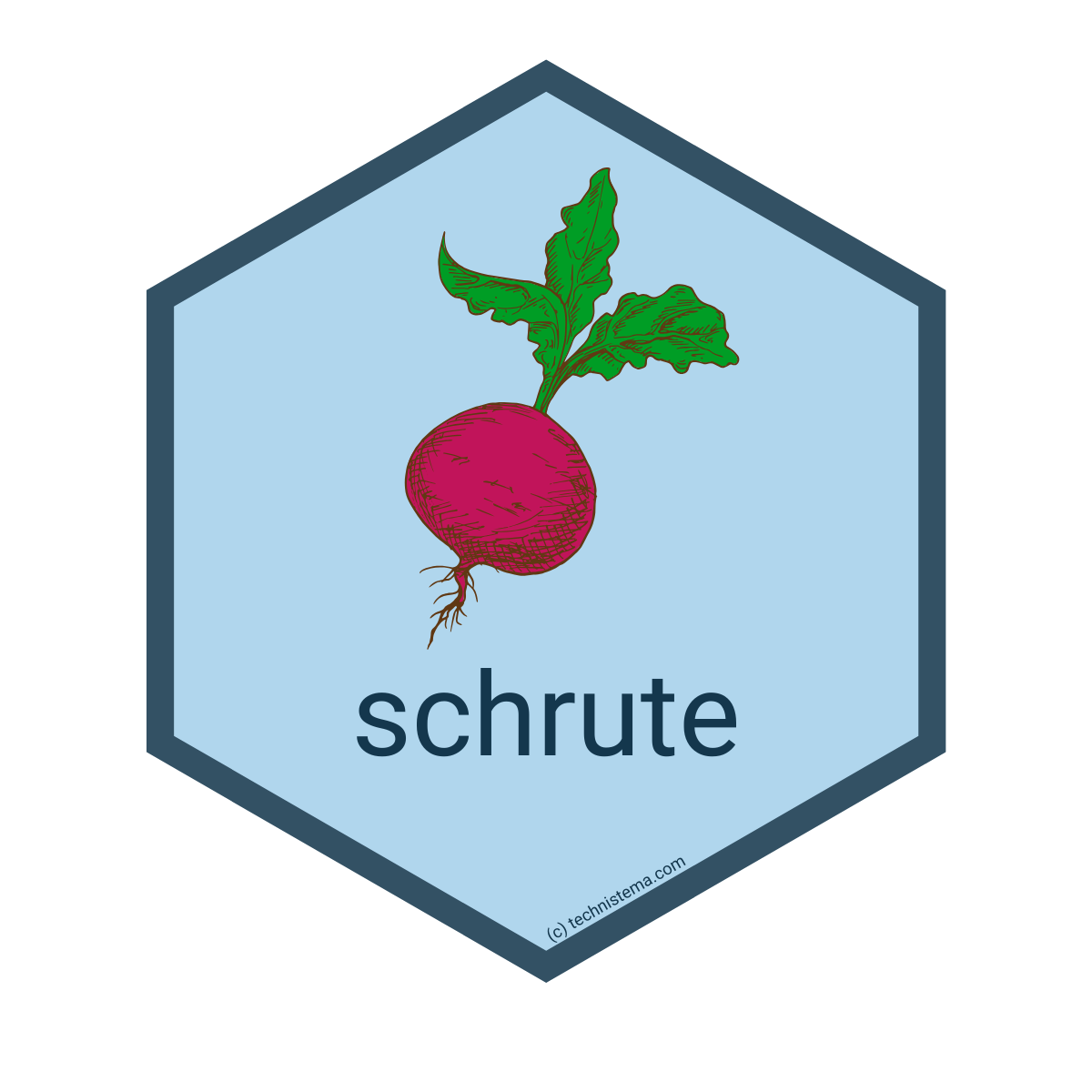 schrute R package