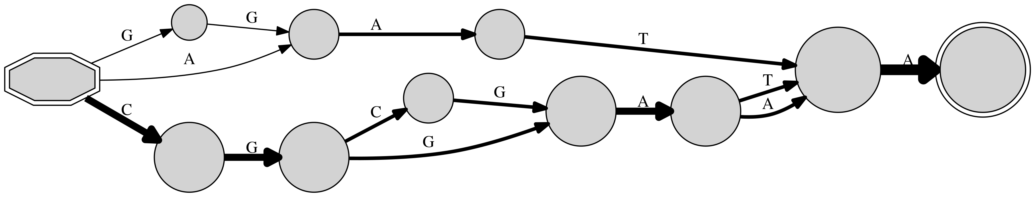 DNA example