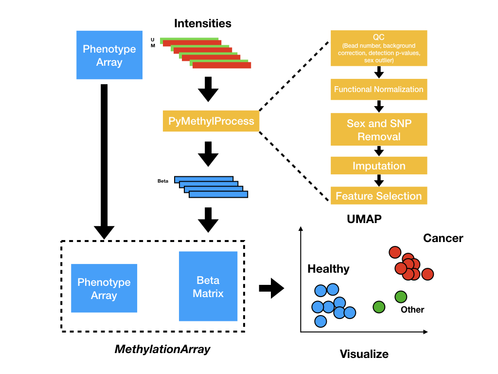 pymethylprocess_overview