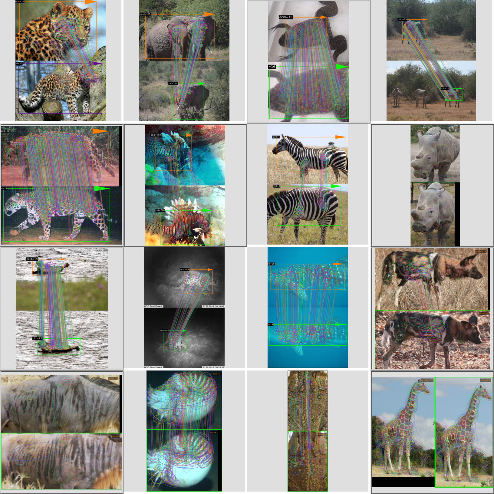 """""""(Note: the rhino and wildebeest mathces may be dubious. Other species do work well though"""")"""